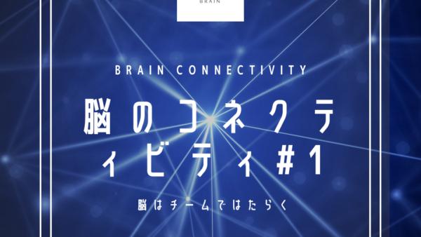 脳のコネクティビティについて勉強する Part.1 〜脳はチームではたらく〜