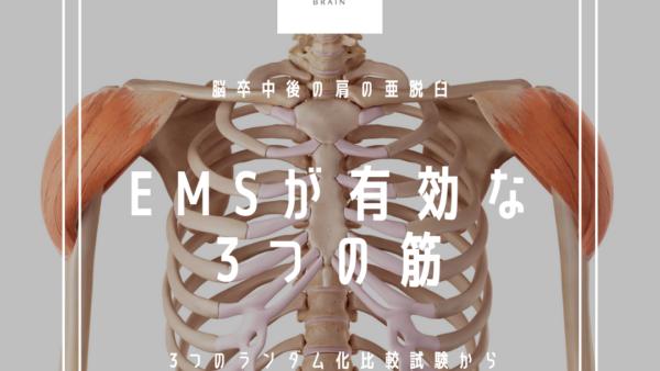 脳卒中後の肩の亜脱臼に対するEMSが有効な3つの筋